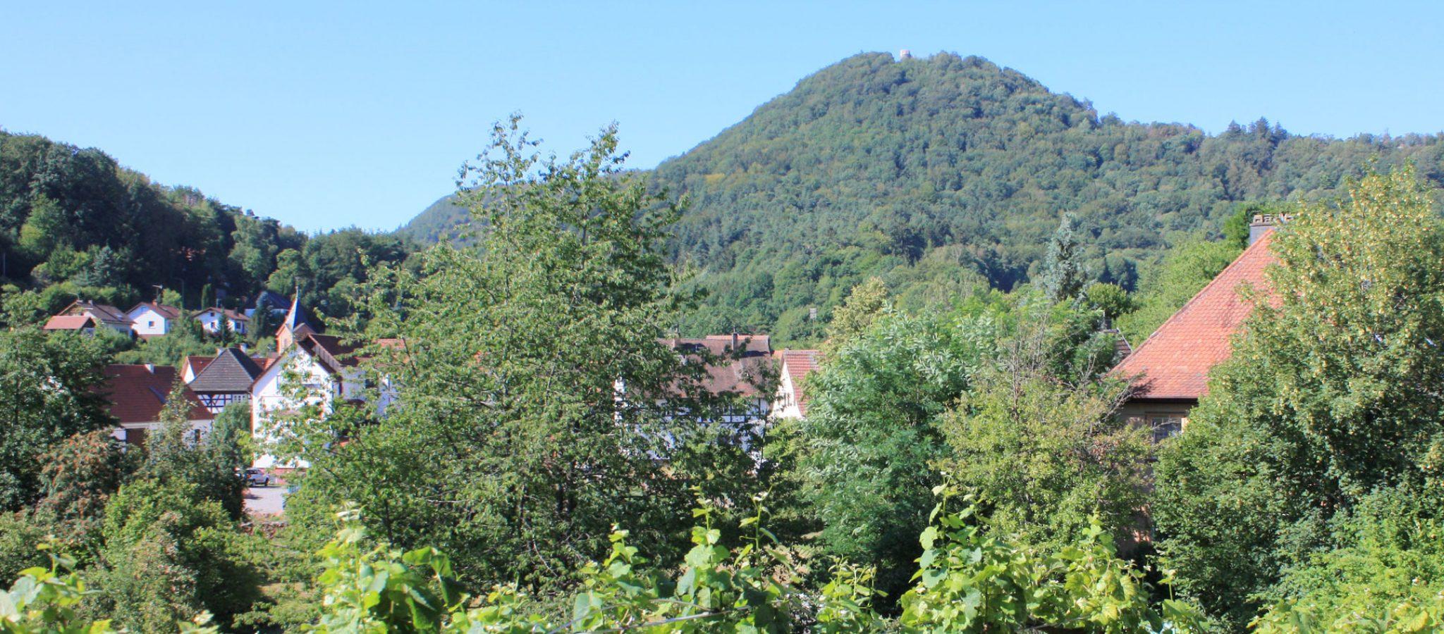 Blick auf die Wegelnburg