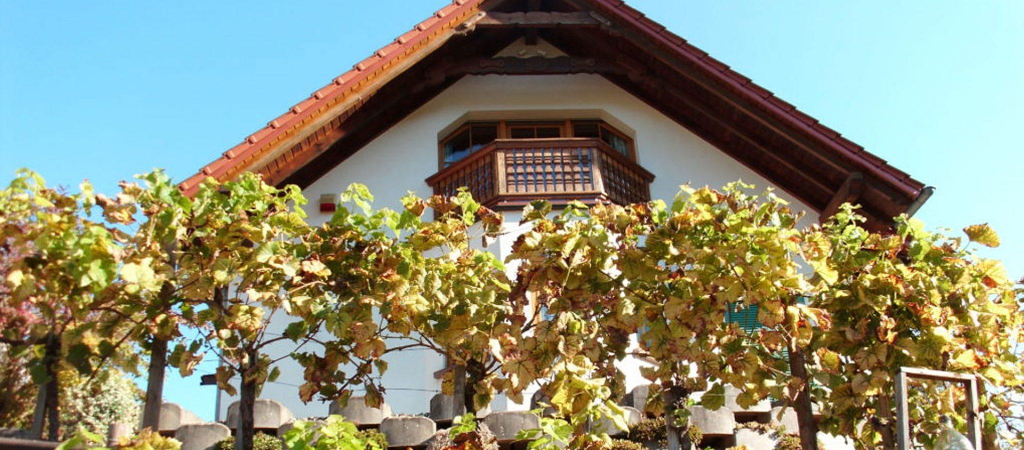 GS_Herbst